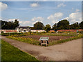 SJ9921 : The Walled Garden, Shugborough by David Dixon