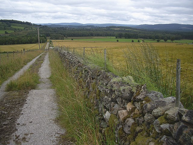 Track downhill from Cockardie reservoir