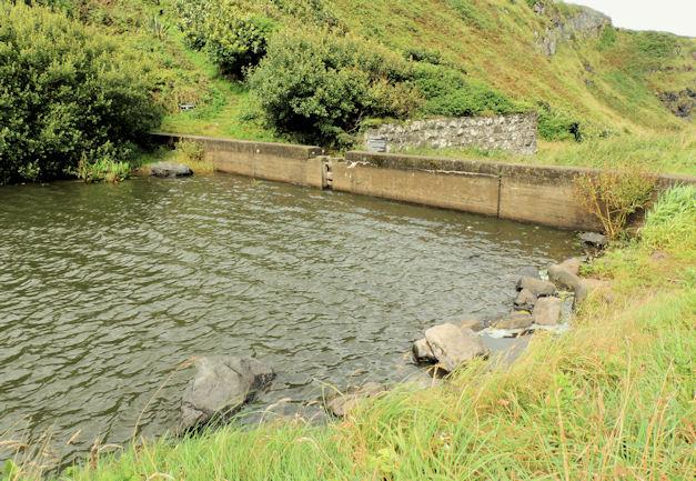 Dam, Downhill (3)