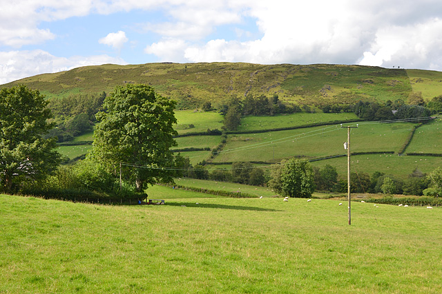 Field near Sychnant Chapel