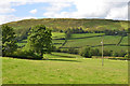 SN9777 : Field near Sychnant Chapel by Nigel Brown