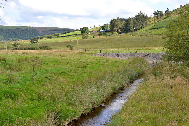 The infant Afon Dulas