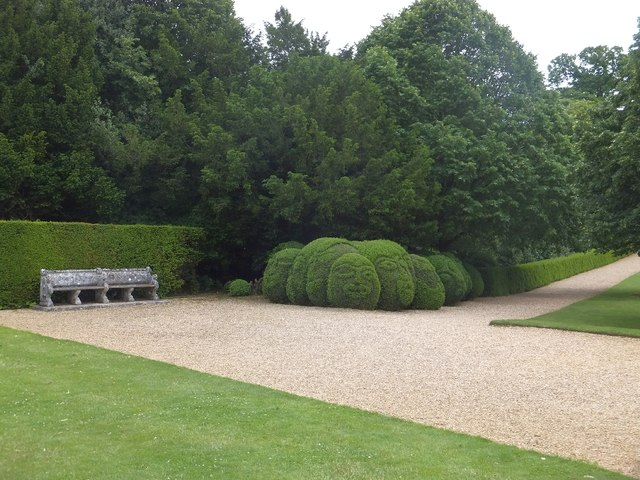 Topiary faces at Kingston Lacy