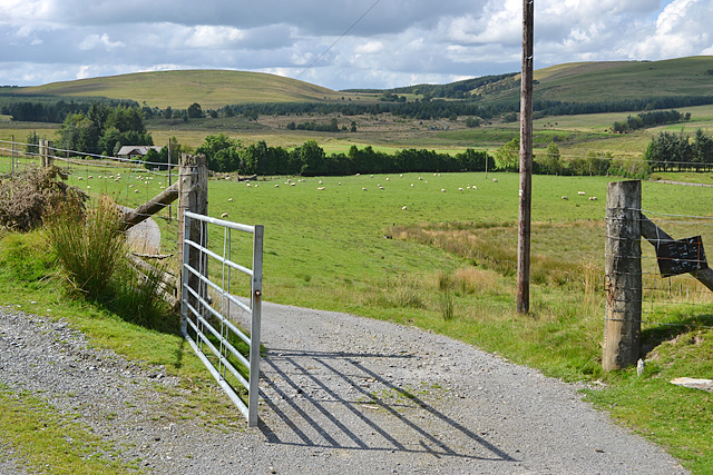 Gate on the road