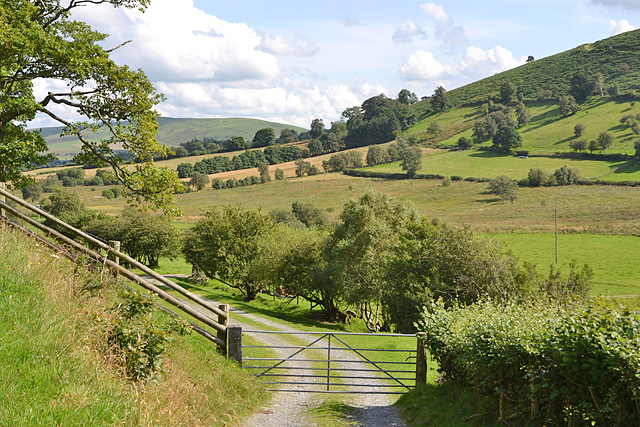 Lane leading to Cae'rneuadd farm