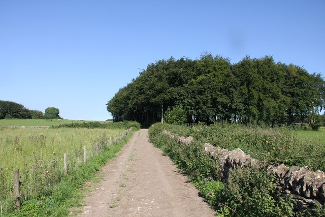 Track and copse near Chedworth airfield