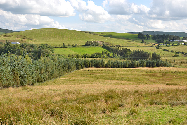 The Marteg valley east of Pant-y-dwr