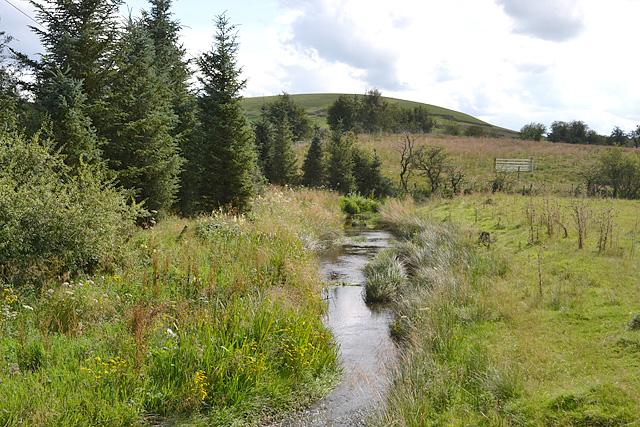 The infant Afon Marteg east of Pant-y-dwr