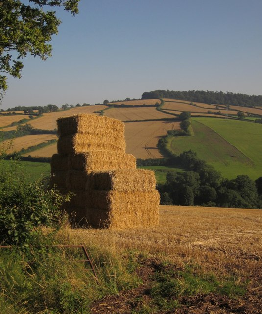 Straw stack by Oakpark Lane