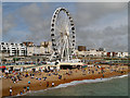 TQ3103 : Brighton Wheel and Beach by David Dixon