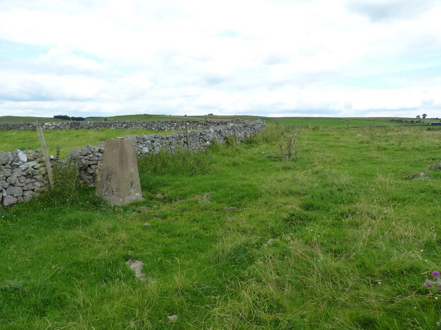 Blackstone's Low trig point and drystone wall