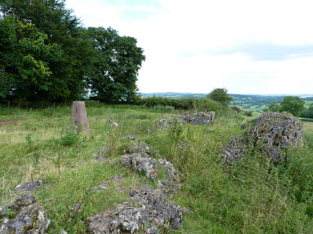 Madge Hill trig and summit area