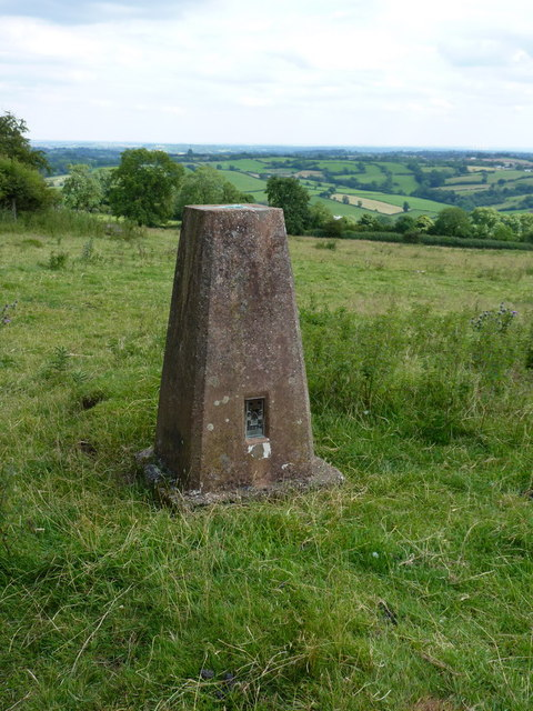 Madge Hill trig - closeup