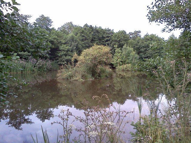 Pond by Hulland Hollow Brook