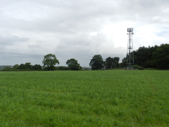 Telecomms mast, by Wood Lane