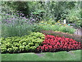 TQ2979 : Flowerbed - St James' Park by Paul Gillett