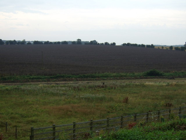 Farmland, Crow's Nest Farm