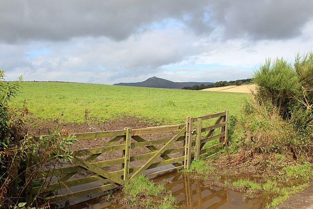 Pasture near Easter Aquhorthies stone circle