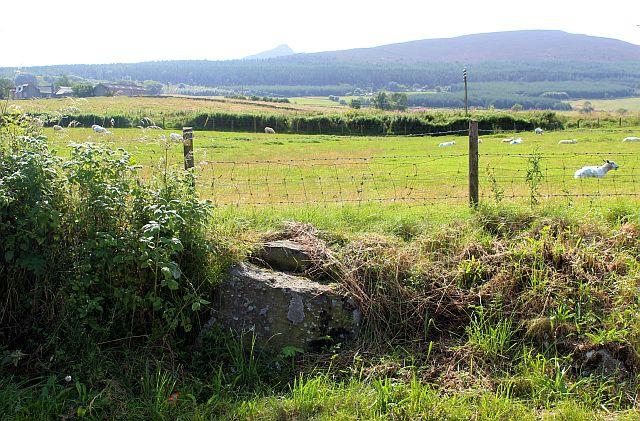 Coronation Stone, Oyne Fork