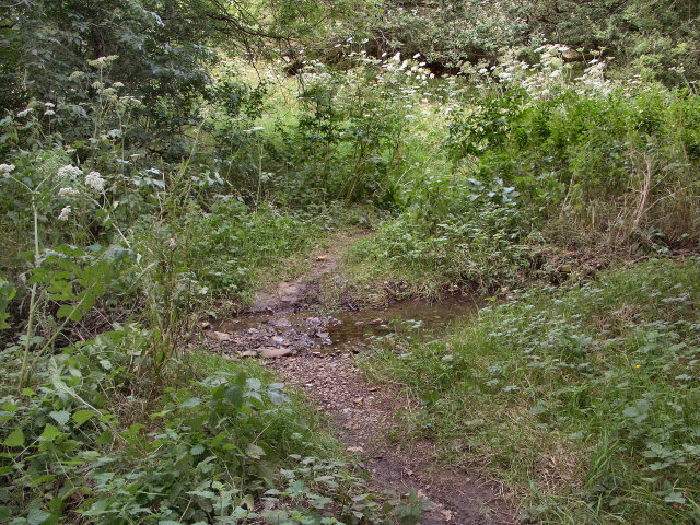 Small ford to the south of Cefn Cribwr