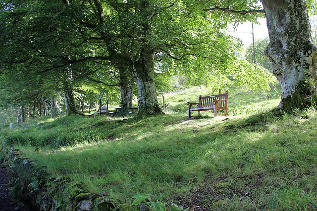 Picnic area, Rowantree