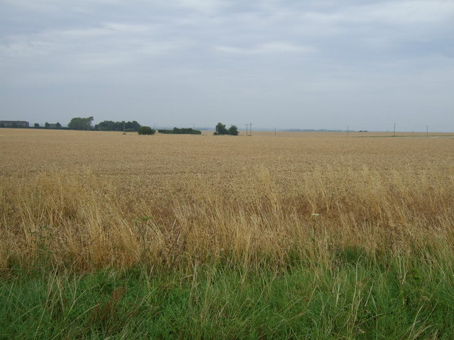 Farmland near Elsworth Lodge