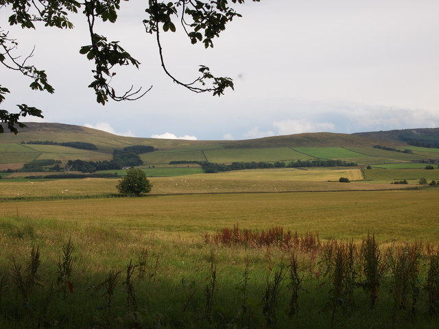 Fields at Drumcoltran