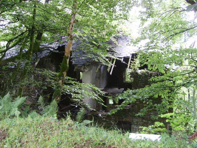House Hidden By Trees © Chris Whitehouse :: Geograph
