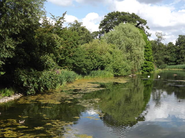 The Lake, Kew