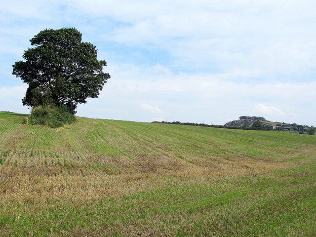 Fields near Banks Farm