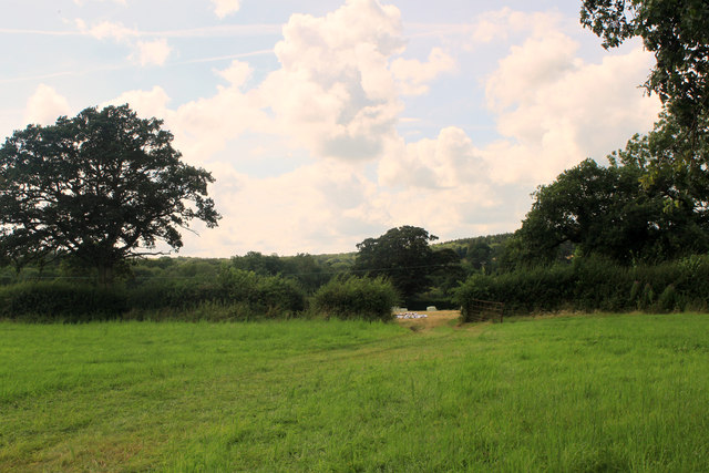 2012 : South west from Dark Lane
