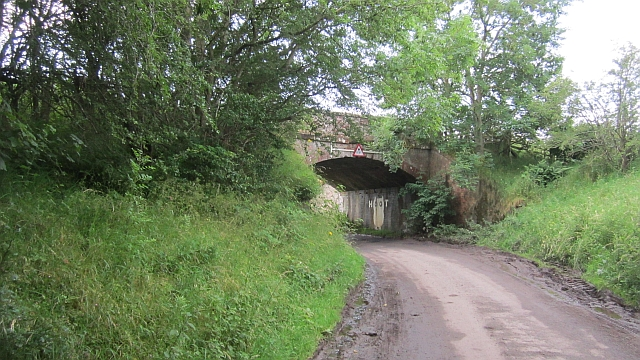 "The ""Hoot Bridge"", Rutherford"