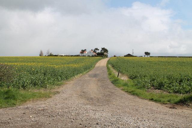 Track to White House Farm