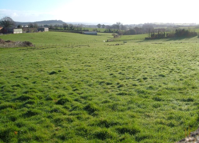 Field, Langdon Farm