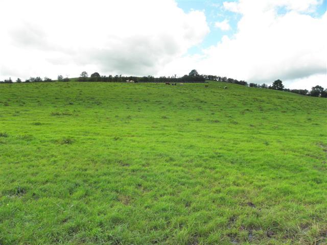 Corcaghan Townland