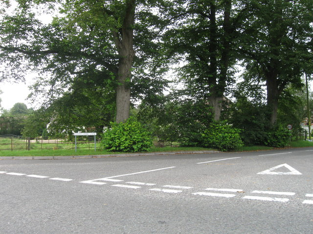 Whatcombe lane, Winterborne Whitechurch
