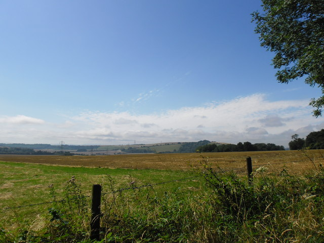 Looking from Queen Elizabeth Country Park towards Windmill Hill