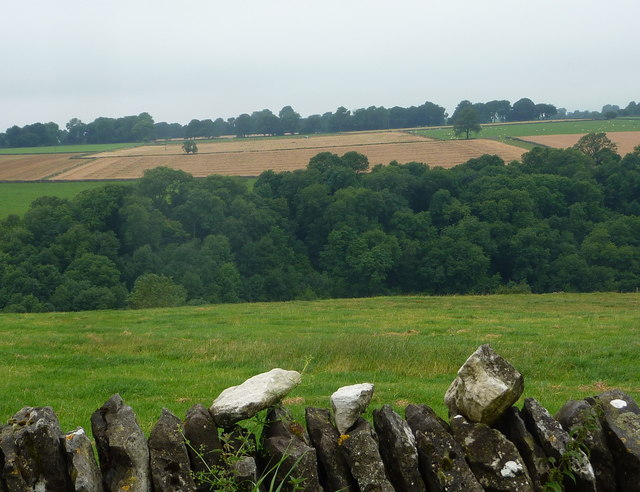 Fields either side of Monk's Dale