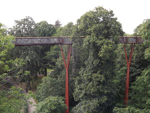Treetop Walk, Kew