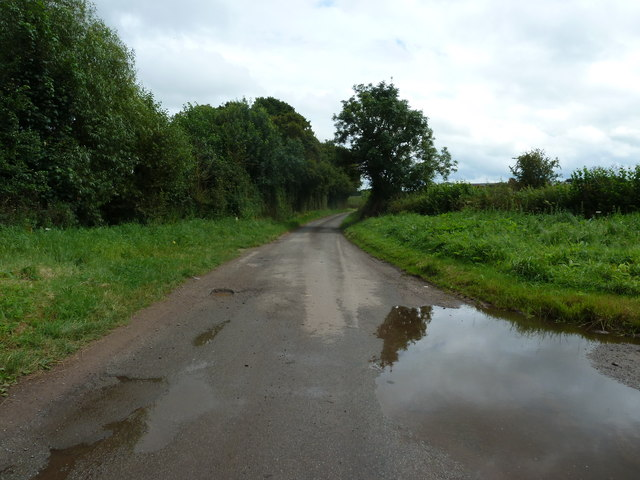 Single track road from Llangunnock Bridge towards Trewaugh