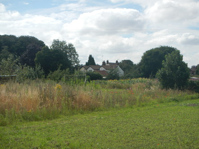 Allotments at Tostock