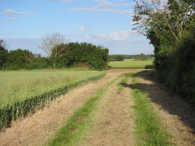 Footpath joining bridleway