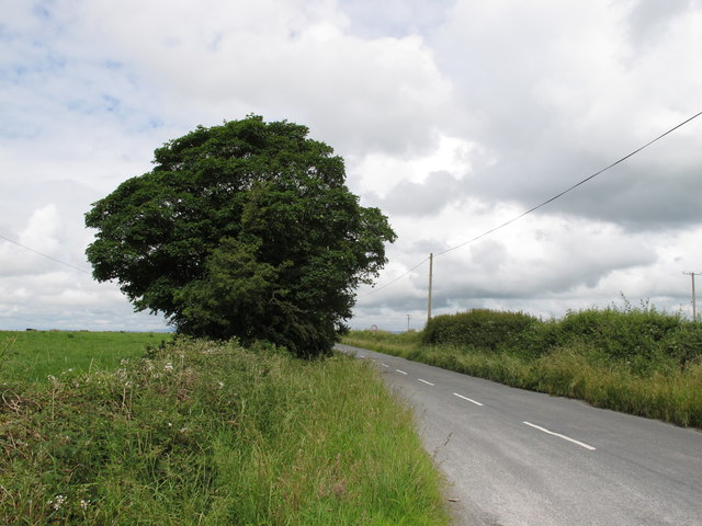 Road between Kerry Pike and Tower