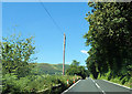 SH8912 : Straight A458 passing Coed ffridd-groes by John Firth