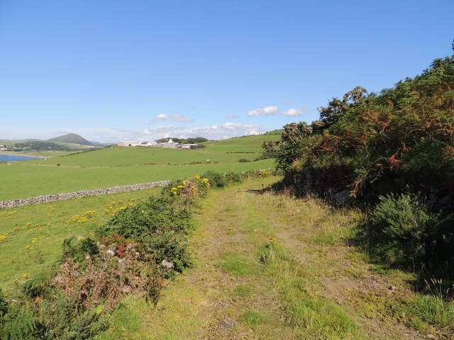 Farm Track at Downan Hill