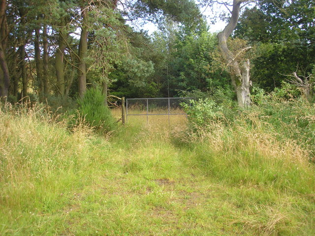 Gate from clay shooting centre