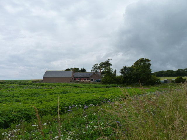 Tanglehall cottages