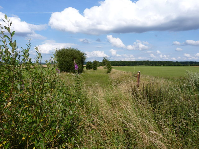 The former railway line