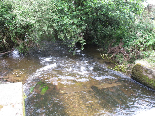 Shournagh River at Loughane West