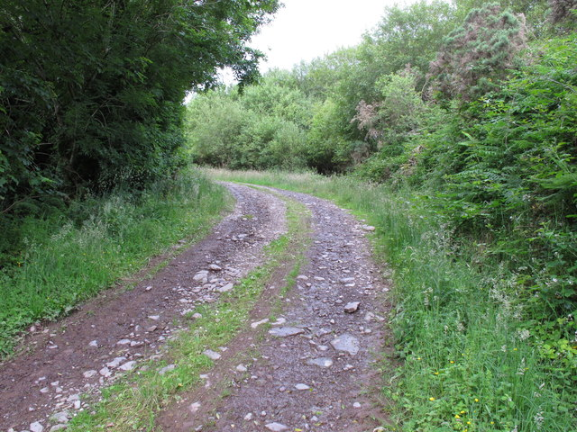 Farm track near Loughane east
